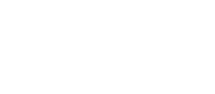ТС  Дилижанс